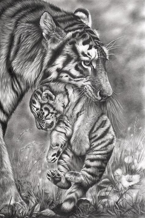 Animal pencil drawings, drawing with pencil, pencil drawing tutorials Realistic Animal Drawings, Pencil Drawings Of Animals, Animal Sketches, Cool Drawings, Drawing Sketches, Drawing Animals, Eye Drawings, Drawing Tips, Drawing Ideas