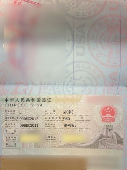 China Group E Visa Sample Visa Chinese Visa Travel Visa