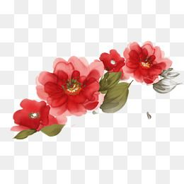 Red Watercolor Flower Decoration Pattern Red Watercolor Flowers Png Transparent Clipart Image And Psd File For Free Download Free Watercolor Flowers Watercolor Flowers Flower Png Images