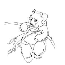A Giant Panda Coloring Page Panda Coloring Pages Coloring Pages