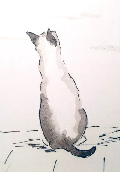 Aquarell Illustration Katzenmomente Illustration Katze