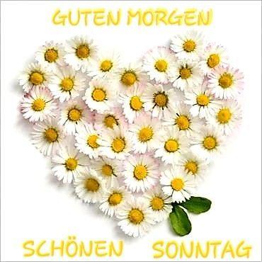 (notitle) - Guten Morgen Sprüche - #guten #Morgen #notitle #SPRÜCHE