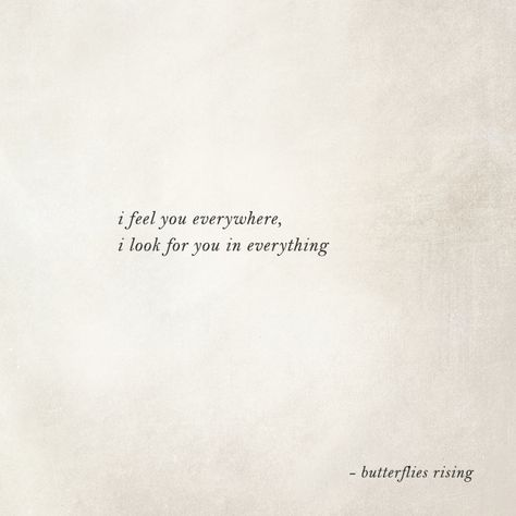 i feel you everywhere, i look for you in everything  – butterflies rising