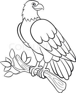 Image Result For American Eagle Coloring Book Passaros Desenhos Colorir