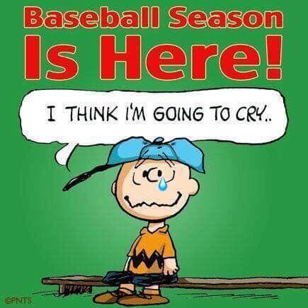 Pin By N K On Sports In 2020 Baseball Memes Giants Baseball Baseball Season