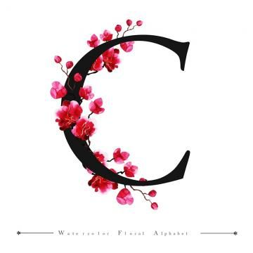 C Alphabet Letter Watercolor Floral Background Watercolor Color Floral Png And Vector With Transparent Background For Free Download Lettering Alphabet Floral Background Floral Monogram Letter C letter wallpaper hd