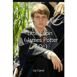 Little Lupin James Potter X Oc James Potter Harry Potter Stories Harry Potter Fanfiction