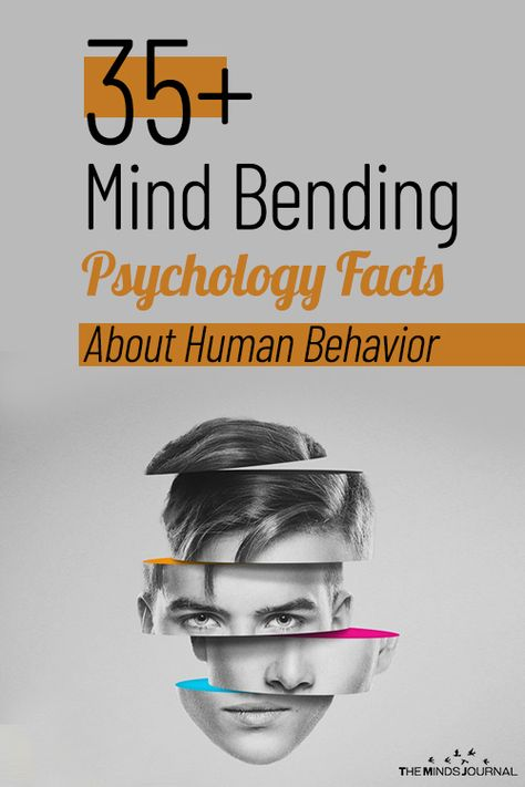 Mind Bending Psychology Facts About Human Behavior – themindsjournal.c… Mind Bending Psychology Facts About Human Behavior – themindsjournal. What Is Psychology, Psychology Fun Facts, Psychology Quotes, Educational Psychology, About Psychology, Interesting Psychology Facts, Psychology Tattoo, Emotion Psychology, Interesting Facts About Yourself