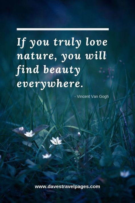 Quotes about the beauty of nature: If you truly love nature you will find beauty everywhere. - Vincent Van Gogh hotel restaurant travel tips tour Tips Travel Love Nature Quotes, Mother Nature Quotes, Quotes About Nature, Vincent Van Gogh, Spending Time Quotes, View Quotes, Quotes Quotes, Short Quotes, Wisdom Quotes