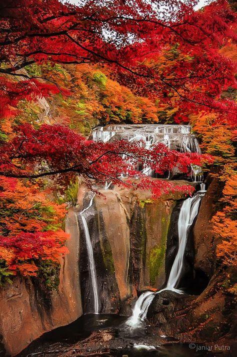 Fukuroda Falls, Ibaraki, Japan: photo by Janiar Putra 袋田の滝 ... same falls a little later, now all the leaves are turning...just beautiful!