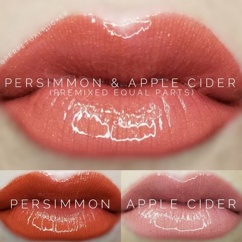 LipSense distributor #228660 @perpetualpucker Persimmon and Apple Cider combo