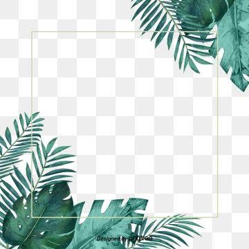 Verde Hoja De Textura Fresca De Frontera Tropical Frames Flower Frame Flower Border
