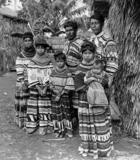 The Seminole tribe developed in the 18th century from members of the Creek Confederacy, mostly Creeks and Hitchiti. Joined by other refugee Native Americans and escaped black slaves, they were cut off from the Creek Confederacy when the United States-Florida border was settled. http://bit.ly/IhM2NK