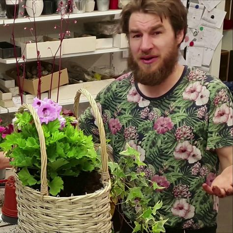 Bepflanzter Korb für den Sommer selber machen. #sommer #deko #dekoidee #selber #machen #sommerdekoration #pflanzen #pflanzendeko