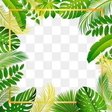 Tropical Summer Beautiful Forest Leaves Frame Rainforest Clipart Beauty Pattern Png And Vector With Transparent Background For Free Download Pola Vektor Tropis Flora