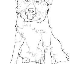 Australian Shepherd Coloring Pages Shepherd Coloring Page Free