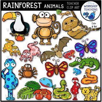 Rainforest Animals Clip Art Rainforest Animals Clip Art Art Bundle