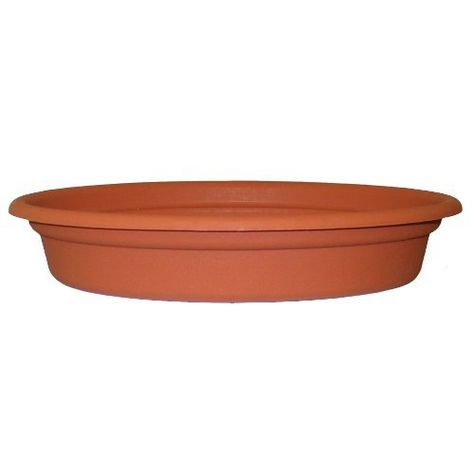 Epingle Sur Gardening Plant Containers