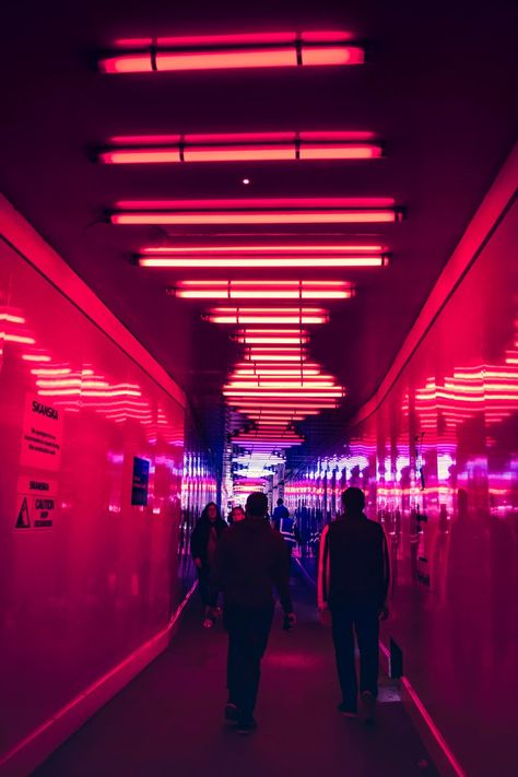 500+ Neon City Pictures | Download Free Images on Unsplash