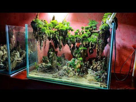 63 Aquascape Avatar Desain 2019 Youtube Aquascape Aquarium Aquascape Design Aquarium Landscape