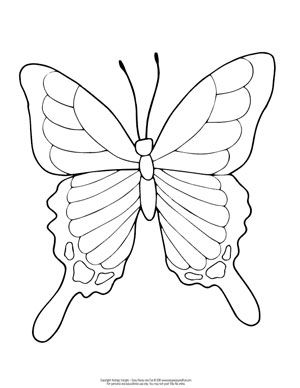 Butterfly Coloring Pages Free Printable From Cute To Realistic Butterflies Butterfly Coloring Page Animal Coloring Pages Bee Coloring Pages