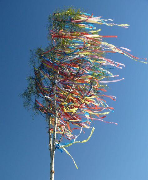 Bunte Bänder am #Maibaum (mit Bildern)   Maibaum, Bilder, Baum