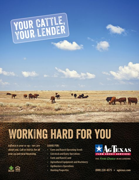 Farm Credit Bank of Texas: Landscapes Magazine | Banks, Texas and Farming