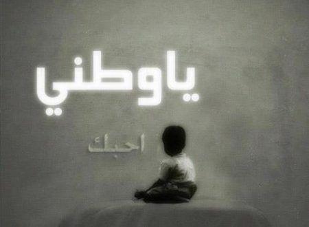 سنقدم لك مقدمة وخاتمة قصيرة عن حب الوطن وفضله علينا وتضحيتنا من أجله يمكنك استخدامها بشكل منفرد أو Daily Life Quotes Lebanese Quotes Army Love
