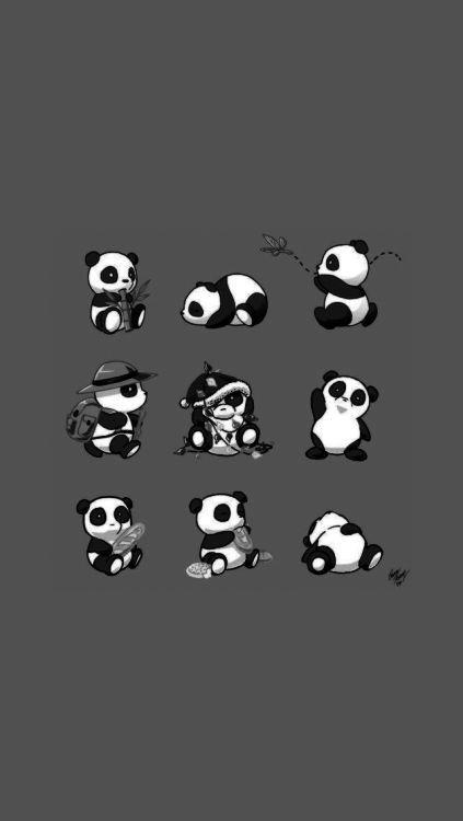 Pin By Leonarda Kutarcic On A Cute Panda Wallpaper Panda Wallpapers Panda Wallpaper Iphone