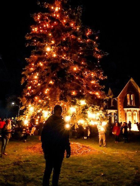 Christmas Getaways In Ontario Windsor Essex County Walkaboot Travel Christmas Getaways Christmas Tree Lighting Christmas