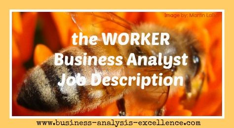 business analyst performance objectives Business Analysis - analyst job description