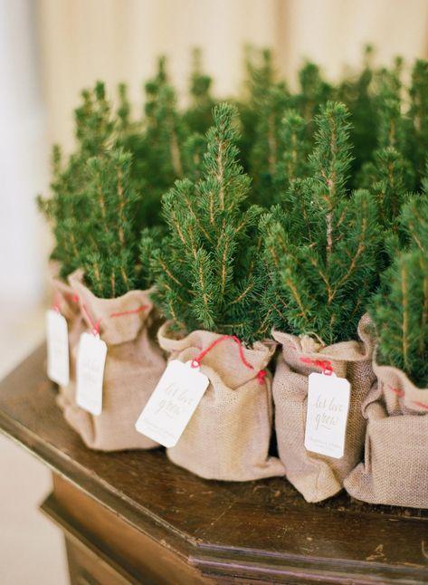 Christmas Wedding Favors