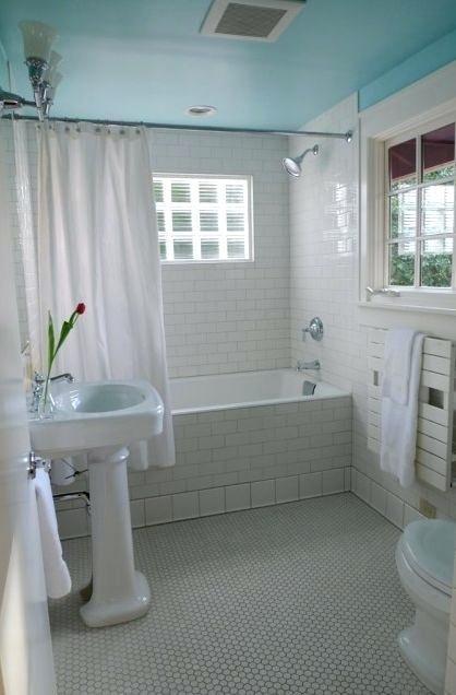 Bathroom Ceiling Paint Color Ideas Bathroom Ideas Bathroom