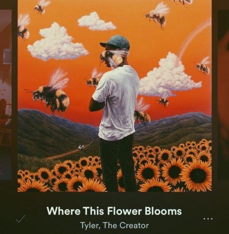 Vsco Elliewheeler19 Images Tyler The Creator Wallpaper Flower Desktop Wallpaper Tyler The Creator