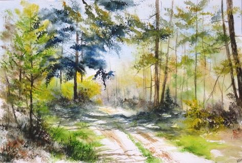 Aquarelle Abby Arbres Foret Paysage Campagne Sous Bois Sapin