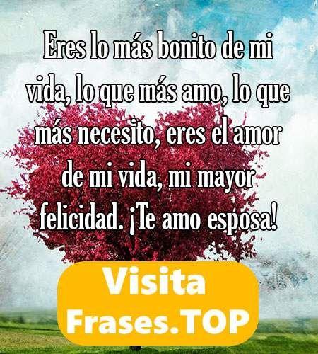Mensajes Y Frases De Amor Para Mi Esposa Cortas Y
