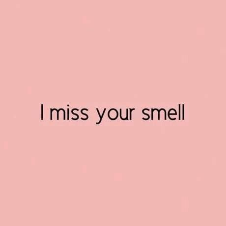 List Of Pinterest Respect Quotes Friendship Lost Images Respect Delectable Quotes About Friendship Lost