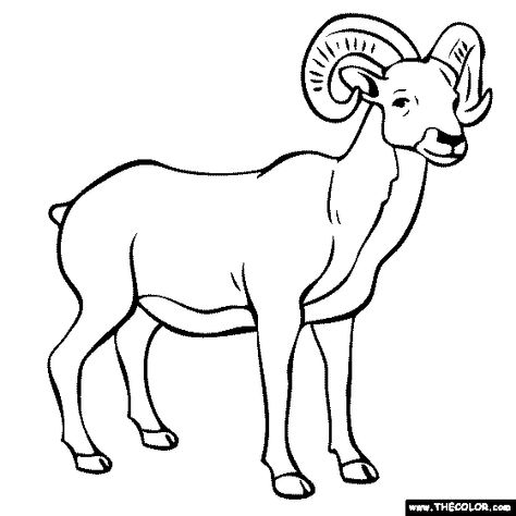 Ram Coloring Page Animal Coloring Books Animal Coloring Pages