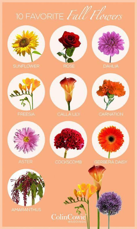 If You D Rather Visit A Wholesale Wedding Event Flower Seller And Order Flowers To M Fall Wedding Flowers Floating Candles Wedding Wedding Flower Arrangements