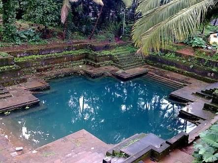 Image Result For Water Ponds In Kerala Beautiful Places To Visit India Travel Places Village Photos