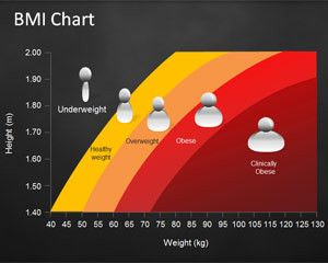 Bmi Chart Template For Powerpoint  Proyectos Que Debo Intentar