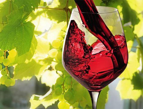 come perdere peso e bere una bottiglia di vino