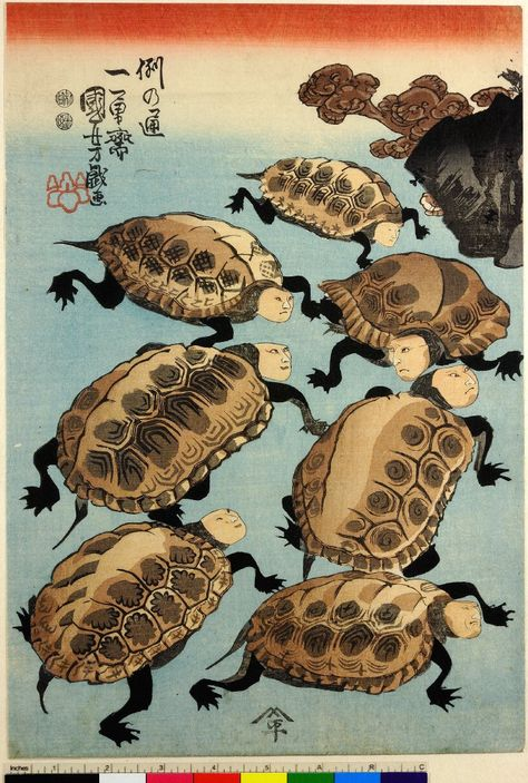 Woodblock print, triptych. Human-faced tortoises clustered around a sake saucer. With three signatures. Nishiki-e on paper. - 1