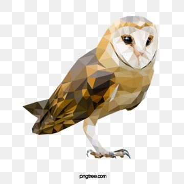 Polygonal Style Barn Owl Realism Animal Polygon Png And Vector With Transparent Background For Free Download Polygon Design Barn Owl Geometric Background