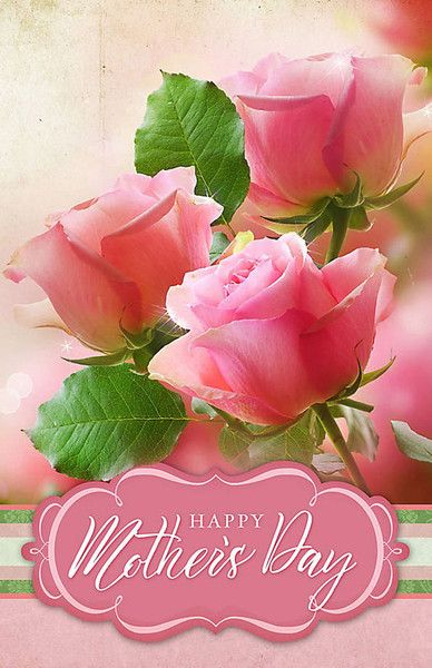 Church Bulletin 11 Mothers Day Pink Roses Pack Of 100 With