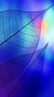 أفضل خلفيات ايفون دقة عالية Best Iphone Wallpaper Ever Blue Drawings Colorful Wallpaper Best Iphone Wallpapers