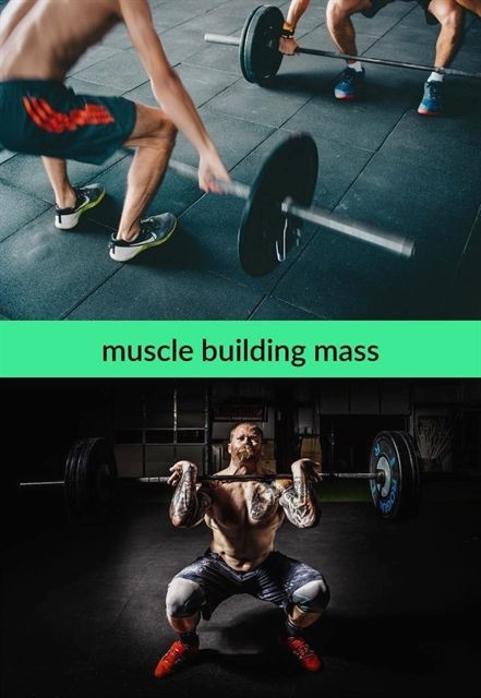 Muscle Building Mass 366 20181102105503 51 How Many Reps For Building Muscle Mass Mus Muscle Building Supplements Build Muscle Female Reproductive System