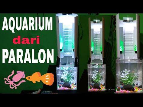 Aquarium Unik Dari Paralon Youtube Aquarium Kreatif