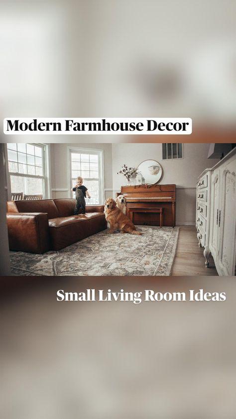 Small Living Room Ideas - Modern Farmhouse Living Room - Area Rug