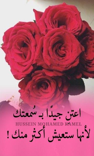 Pin By זיאד חטיב On كلام جميل In 2020 Plants Flowers Rose